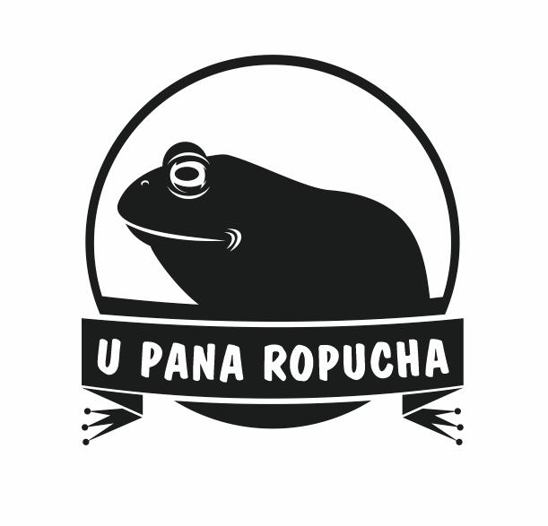 U Pana Ropucha - kim jestem i co planuję