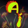 AntyMucha - rośliny owadożerne i owady tropikalne