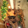 oświetlenie I wentylacja