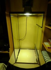 6. Próba metahalogena z lampką z keksówki