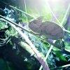 PicsArt 09 10 02.58.00