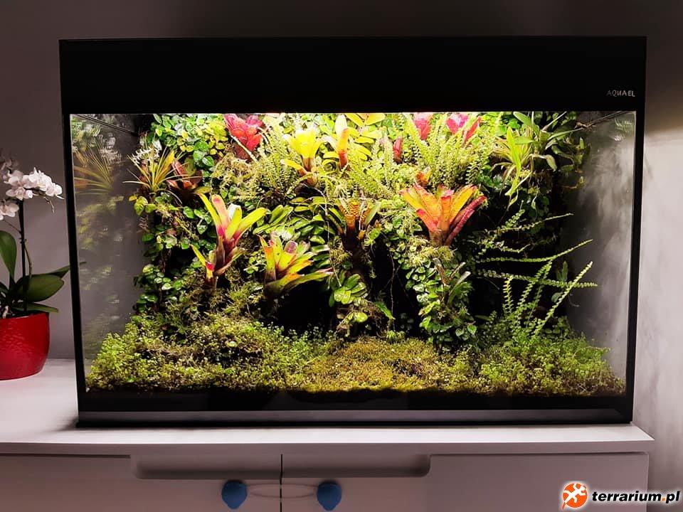 wiwarium W aquael glossy 16m