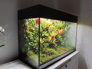 wiwarium W aquael glossy 16m1