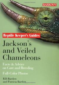Załączony obraz: jacksons-veiled-chameleons-facts-advice-on-care-breeding-patricia-bartlett-paperback-cover-art.jpg