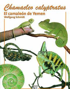 Załączony obraz: ChamCalpy_spanisch.jpg