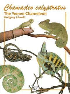 Załączony obraz: Jemen_Engl_01.jpg