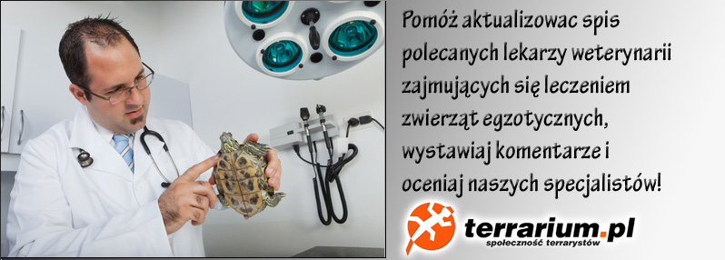 post-3-0-66387800-1428415399.jpg