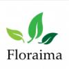 Rośliny do terrarium/vivarium: Bromelie, Begonie, Ficus, Marcgravia, Tillandsia... - ostatni post przez floraima