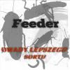Karaczany Tureckie, duże il... - ostatnich postów przez Feeder