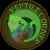 Lygodactylus williamsi - ostatni post przez ReptileCorner