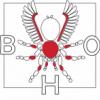 Raport rozmnożenia - Poecilothera vittata - ostatni post przez BHO