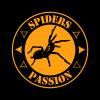 samica B.boehmei dorosła - ostatnich postów przez SpidersPassion