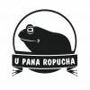 Ceratophrys cranwelli - żaba rogata* - ostatni post przez PanRopuch